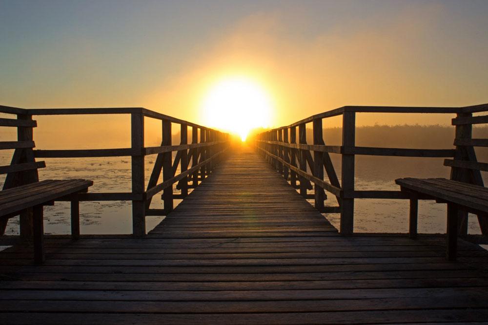 sun-dock